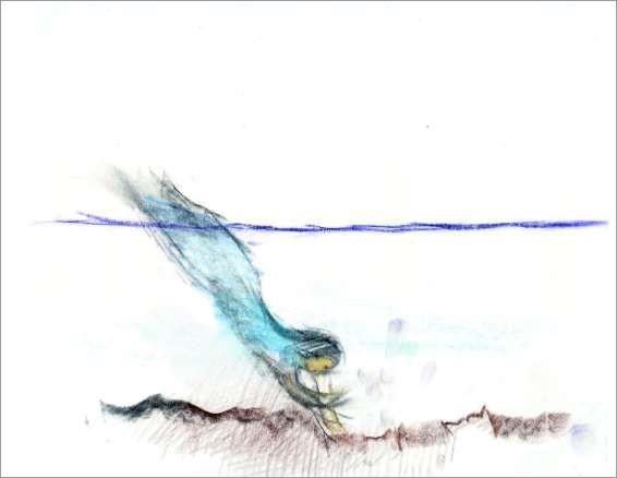 Wellen - Wind - Wesen